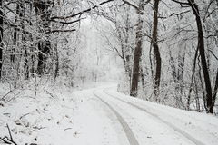 Snow Covered Road. With tire tracks leading away Stock Photo
