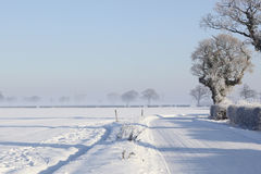 Free Snow Covered Road Royalty Free Stock Images - 17341289