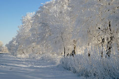 Snow-covered road Royalty Free Stock Image