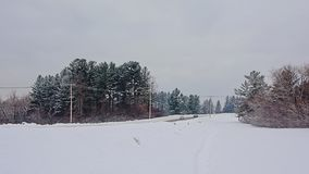 Snow covered road with electricity poles in Gatineau natural park, Quebec. Snow covered road with electricity poles and wires and spruce trees on a cold grey stock images