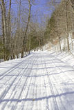 Snow covered road in the forest Stock Photography