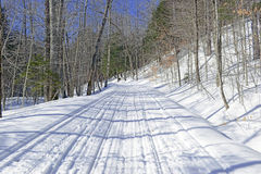 Snow covered road in the forest on cold day Royalty Free Stock Photos