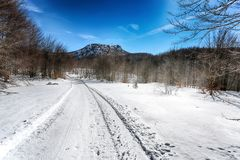 Snow-covered road in forest between mountains, Italy. stock images