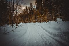 Snow-covered road through the forest stock photography