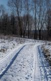 Snow-covered road in the forest, on a winter  day. Snow-covered road in the forest, on a winter sunny day Royalty Free Stock Image