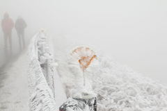 Snow covered road in Nantou Hehuan Mountains, Taiwan Royalty Free Stock Image