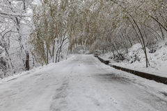 Snow-covered road Stock Photo