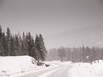 Snow covered road in a snowstorm Stock Photo