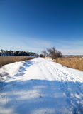 Snow-covered road with traces of people. Snow-covered country road, between 2 lakes with canes, traces of people royalty free stock photography