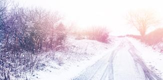 Snow covered road by trees. During winter Royalty Free Stock Images