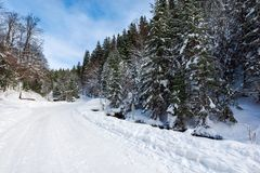 Snow covered road winding uphill through forest. Wonderful winter adventures stock photos