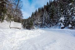 Snow covered road winding uphill through forest. Wonderful winter adventures stock image