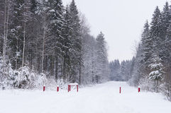 Snow-covered road through the winter woods Royalty Free Stock Photos