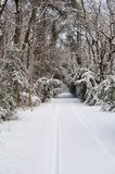 Snow-covered road royalty free stock images