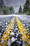 Snow-Covered Road in Yellowstone National Park royalty free stock photography