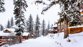 Snow covered roads, trees and houses Royalty Free Stock Images