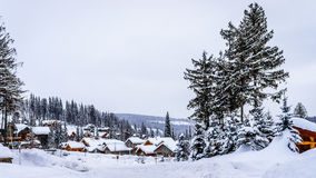 Snow covered roads, trees and houses Stock Images