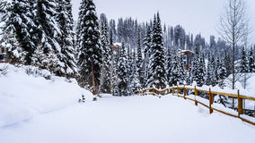 Snow covered roads and trees in the Shuswap Stock Photo