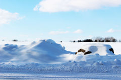 Snow Covered Rocks by a Country Road Stock Images