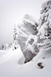 Snow-covered rocks i Ural. Siberia.Taiga. Arkivfoto
