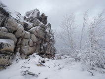 Snow covered rocks and trees in cloudy day Royalty Free Stock Images