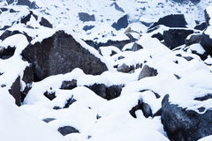 Snow Covered Rocks. Yosemite National Park Royalty Free Stock Images