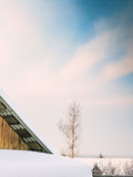 Snow-covered roof of the shed and poplar, close-up Royalty Free Stock Photography