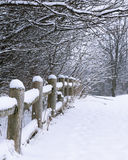 Snow Covered Rustic Fence. Rustic fence and surrounding bare trees covered in freshly fallen snow Royalty Free Stock Photo