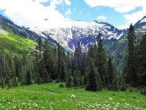 Free Snow Covered Ruth Mountain View From A Meadow Stock Photos - 104071323