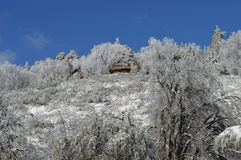 Snow Covered San Bernardino Mountain Forest Lodge Royalty Free Stock Images
