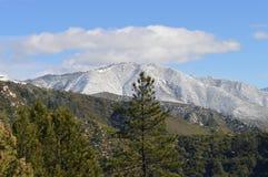 Snow Covered San Bernardino Mountains Royalty Free Stock Images