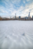 Snow-covered Sheep Meadow - Central Park Royalty Free Stock Photo