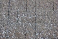 Snow-covered sidewalk tile 30417 Stock Image