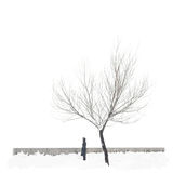 Snow-covered single tree isolated on pure white background with the lonely man Royalty Free Stock Images