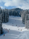 Snow covered ski piste. With many skiers surrounded by trees on bright day. Combloux ski area, French alps Royalty Free Stock Photos