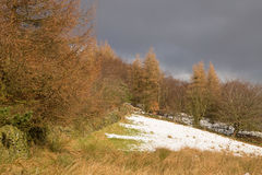 A snow covered slope Stock Image