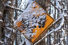 Snow Covered Slow Sign Attached to a Tree. A snow covered yellow slow sign in a park near Anchorage, Alaska stock photos