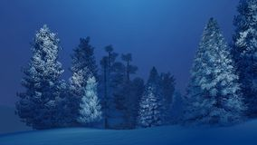 Snow-covered spruce forest at winter night. Dreamlike winter night in a snow-covered spruce forest. Decorative 3D illustration was done from my own 3D rendering Royalty Free Stock Image