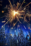 Snow covered spruce trees and sparkler - christmas Royalty Free Stock Images