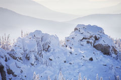 Snow covered spruces and rocks. Mountain Zyuratkul, winter lands Stock Photography