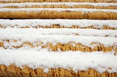 Snow covered stack of logs Royalty Free Stock Images