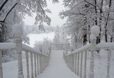 Snow-covered staircase in the winter forest royalty free stock image