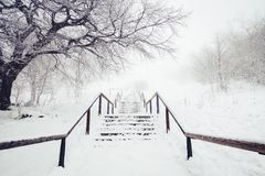 Snow covered stairs and railings. On a misty day in winter Stock Photo