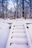 Snow covered stairs in rural York County, Pennsylvania. Royalty Free Stock Photography