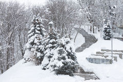 Snow-covered stairs Stock Image
