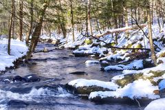 A snow covered stream Enders State Forest. A snow covered stream flowing through Enders State Forest in Granby Connecticut in Hartford County in wintertime royalty free stock image