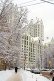 Snow-covered street. City in winter: snow-covered trees, cars, pavement and white multistorey building at the end of the street Royalty Free Stock Photography