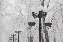Snow-covered street lamps and trees on a city boulevard Royalty Free Stock Photography