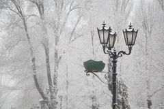 Snow-covered street lamps and trees on a city boulevard Royalty Free Stock Image