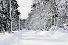 Snow covered Woodsy Suburban Road after Storm. Background image of a street thickly covered with snow. Trees and mailboxes, homes, and everything covered with Royalty Free Stock Images